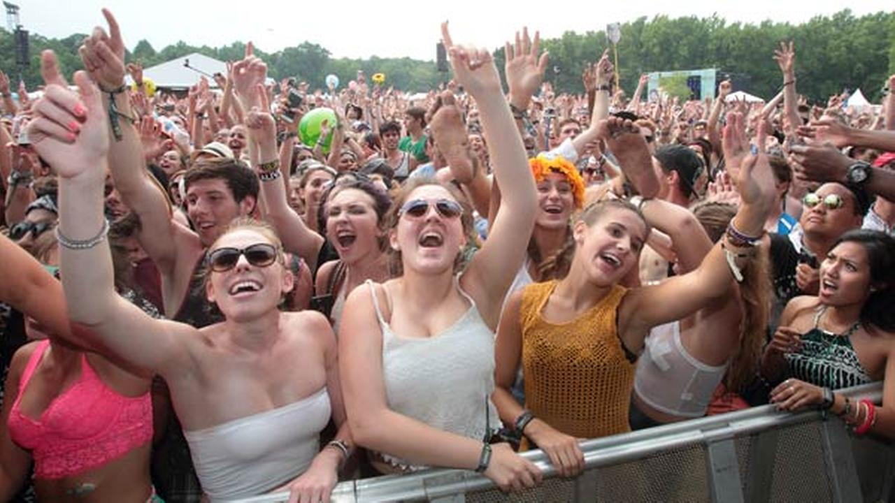 Festival goers enjoy Day 2 of the 2015 Firefly Music Festival at The Woodlands on Friday, June 19, 2015, in Dover, Del.