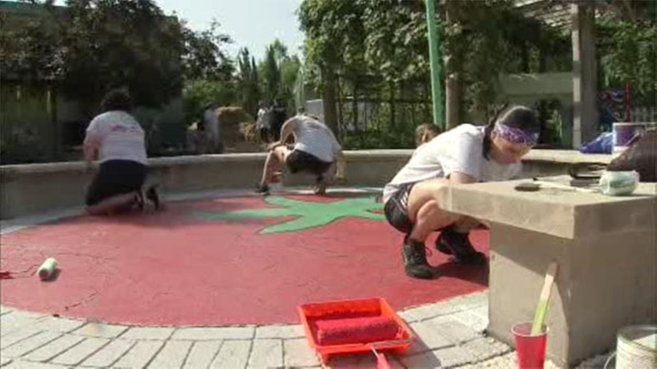 Volunteers in Camden build entire playground in a day
