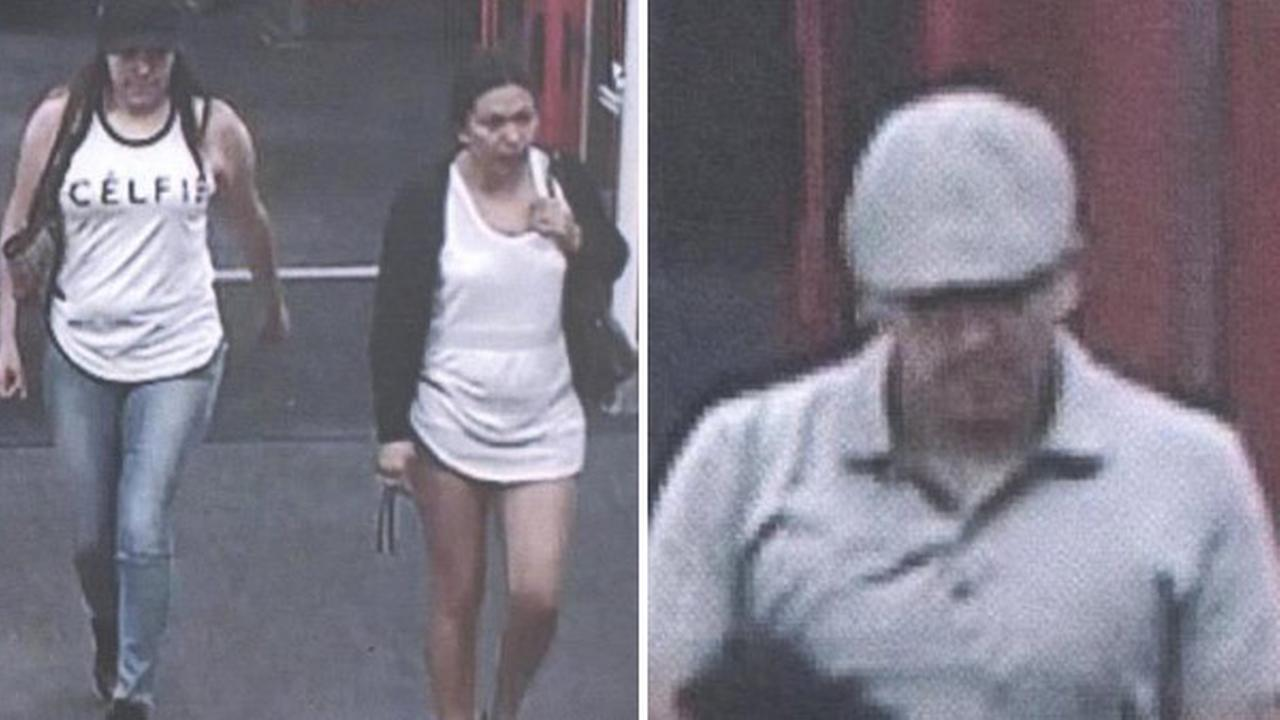 Credit card theft suspects