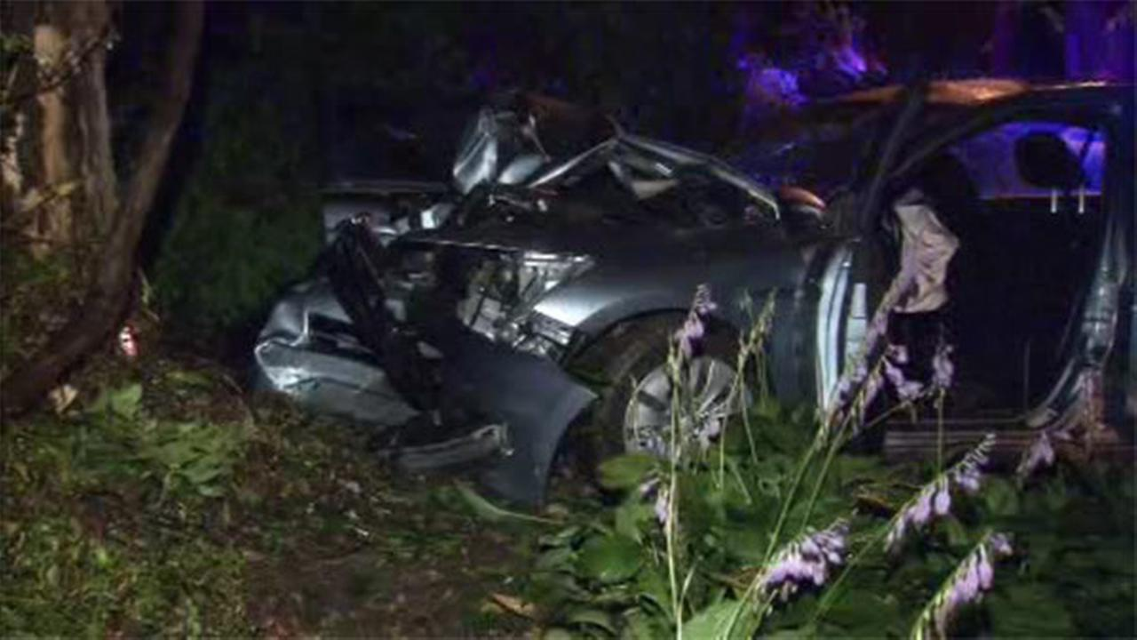 Driver injured after car slams into tree in West Mt. Airy
