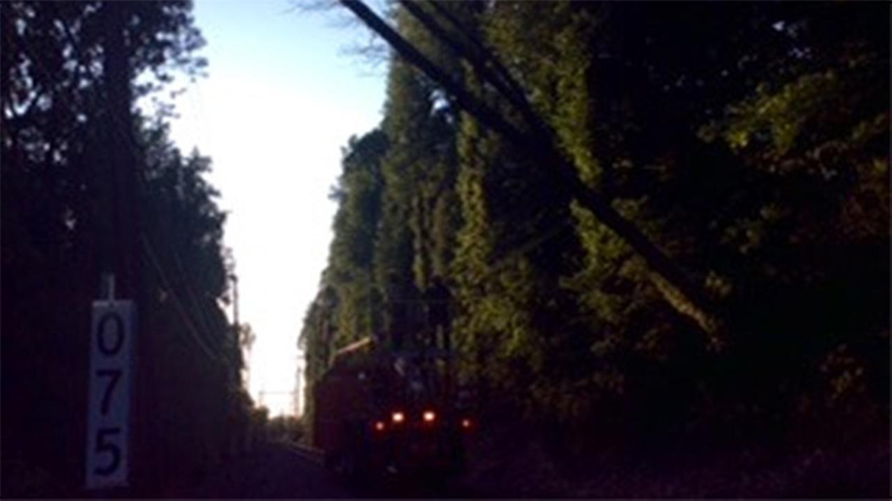 Downed tree suspends SEPTA rail service in Bucks Co.