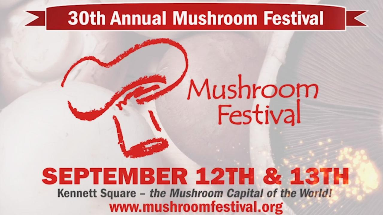 30th Annual Mushroom Festival