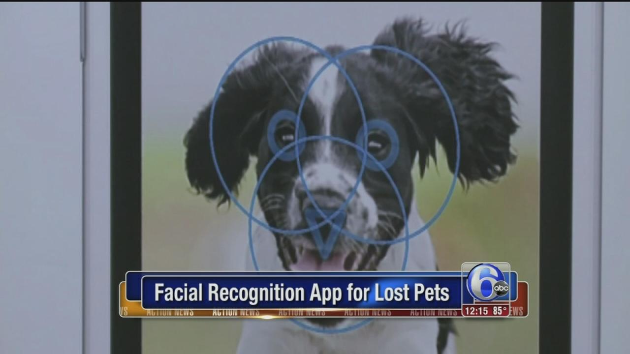 VIDEO: Facial recognition app for pets