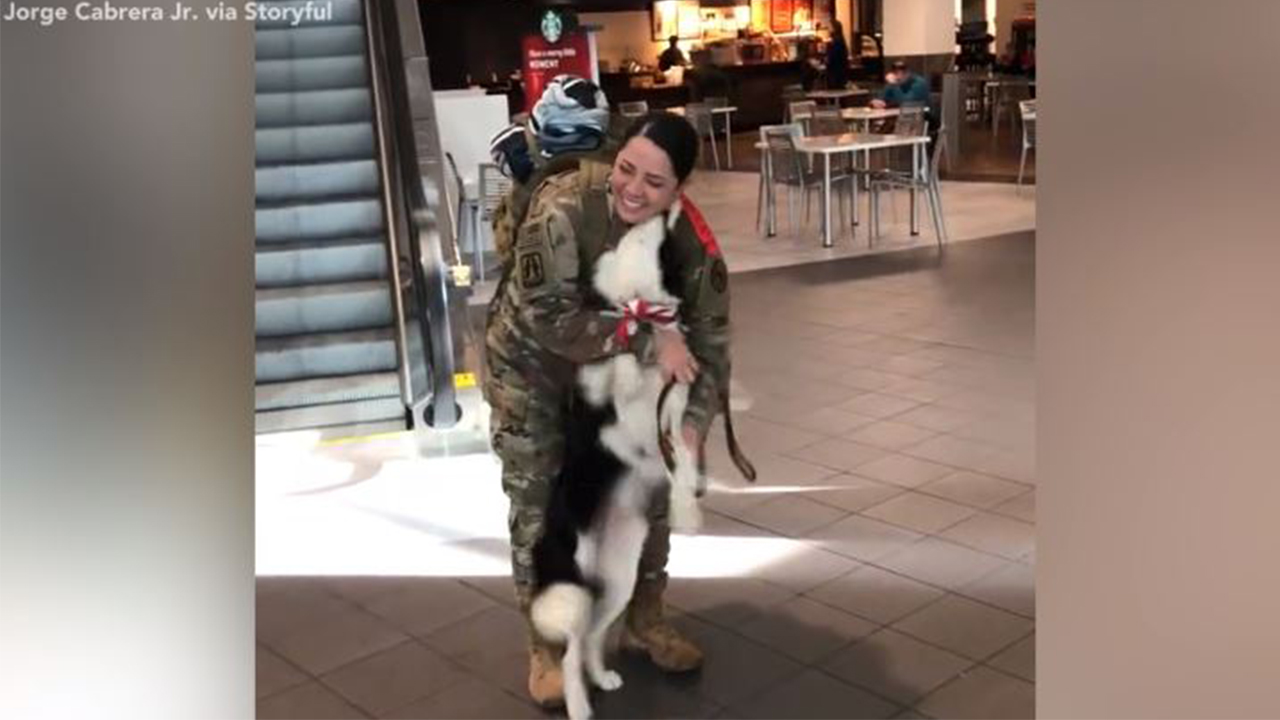 Soldier receives sweet welcome home from beloved family dog