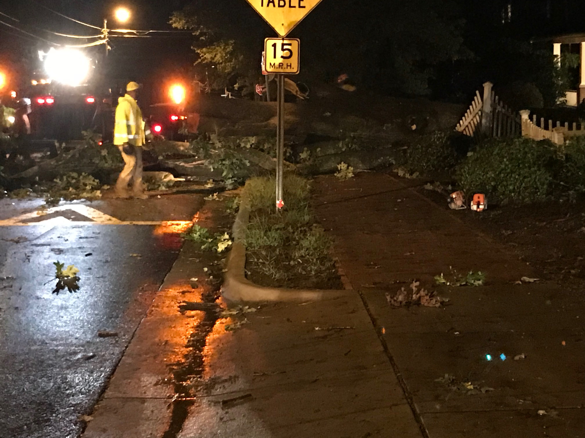 Michael leaves a mess in Chapel Hill with downed trees and power outages.