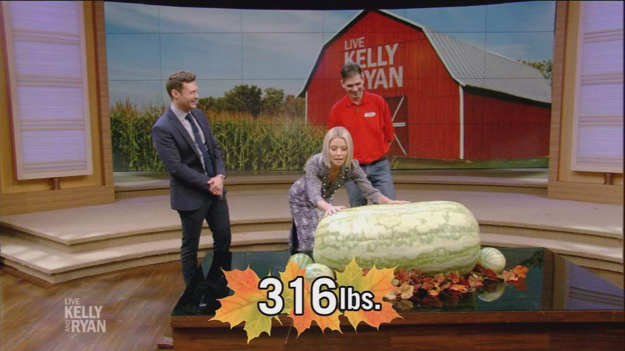 Wake County man sets the record for largest ever watermelon