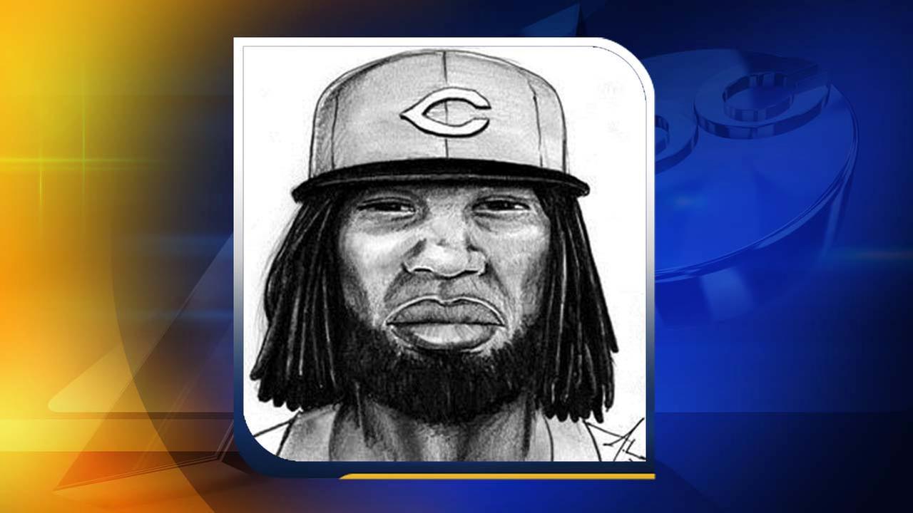 Composite sketch of the suspect