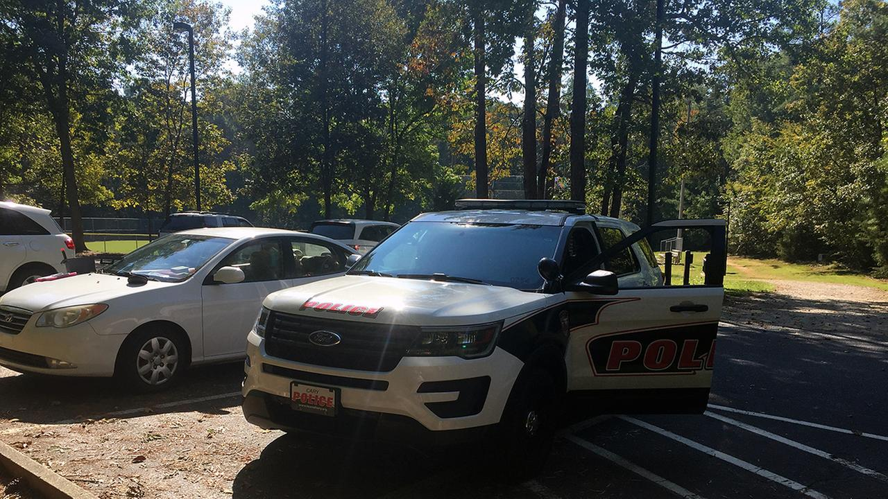 A rash of car break-ins at Cary parks has residents worried.