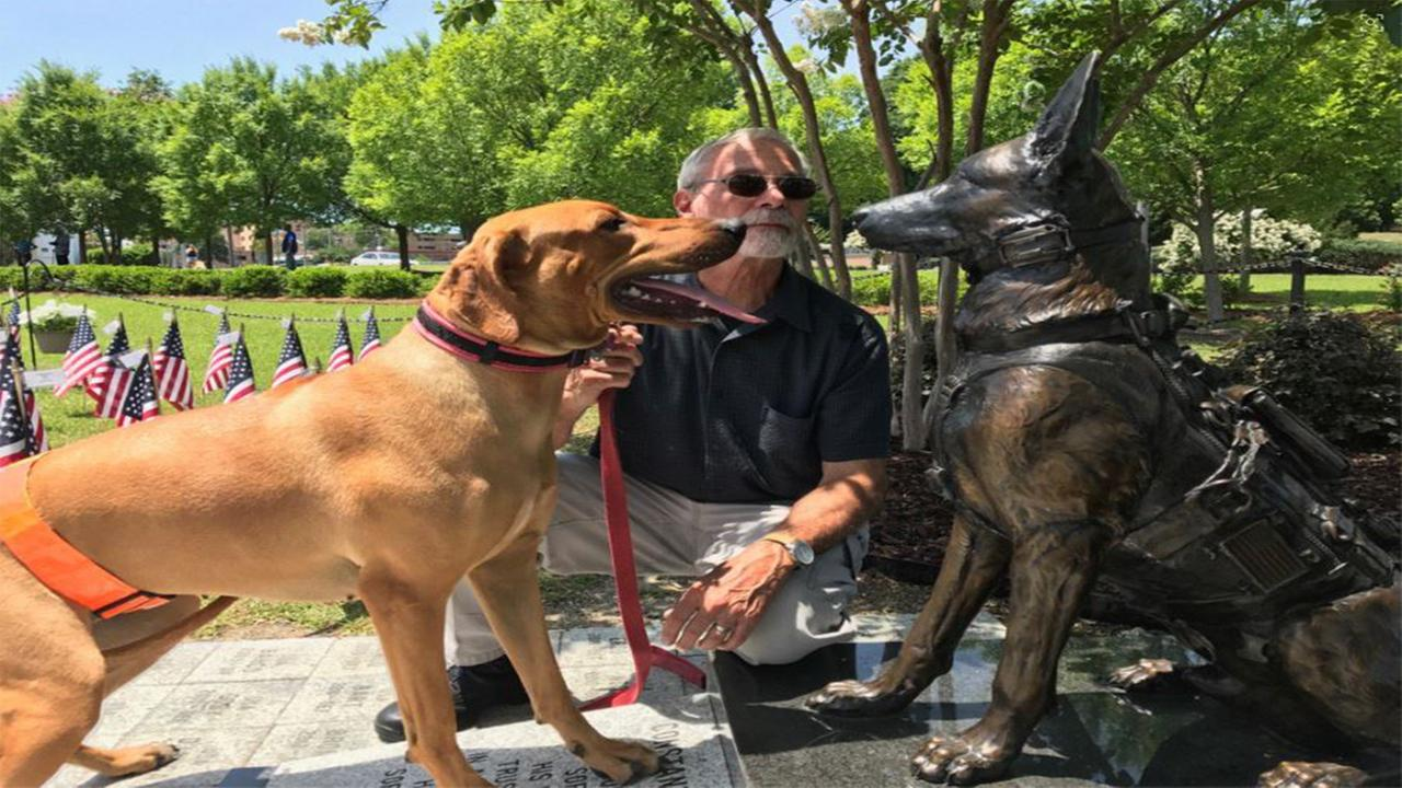 Canela pays her respects to fallen K-9s at the SOF K-9 Memorial