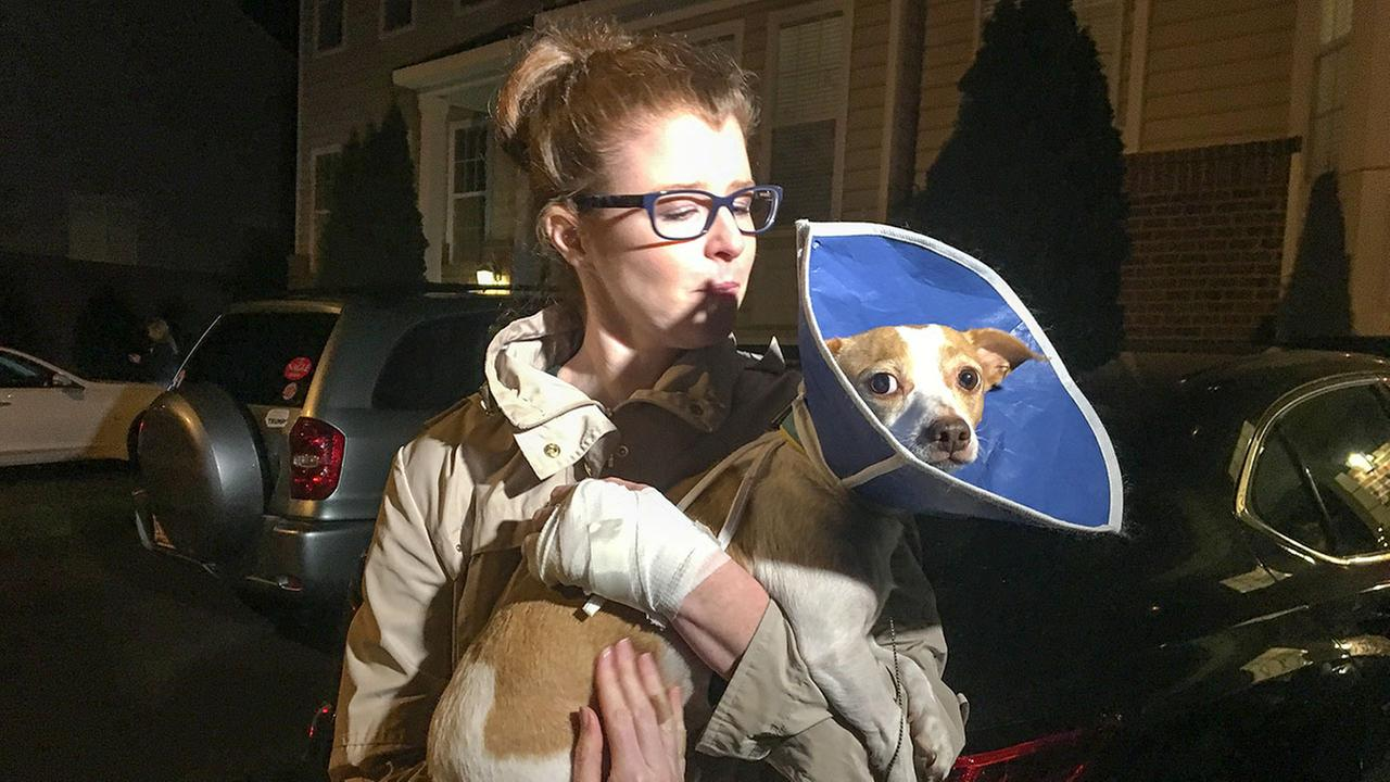Courtney Zickler and her dog Jackson were both injured when they were attacked by a neighbors dog.