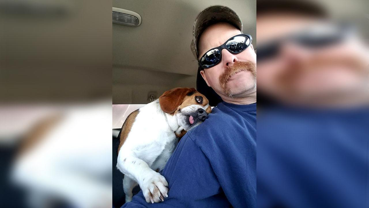 Photo of rescue dogs freedom ride from euthanasia goes viral