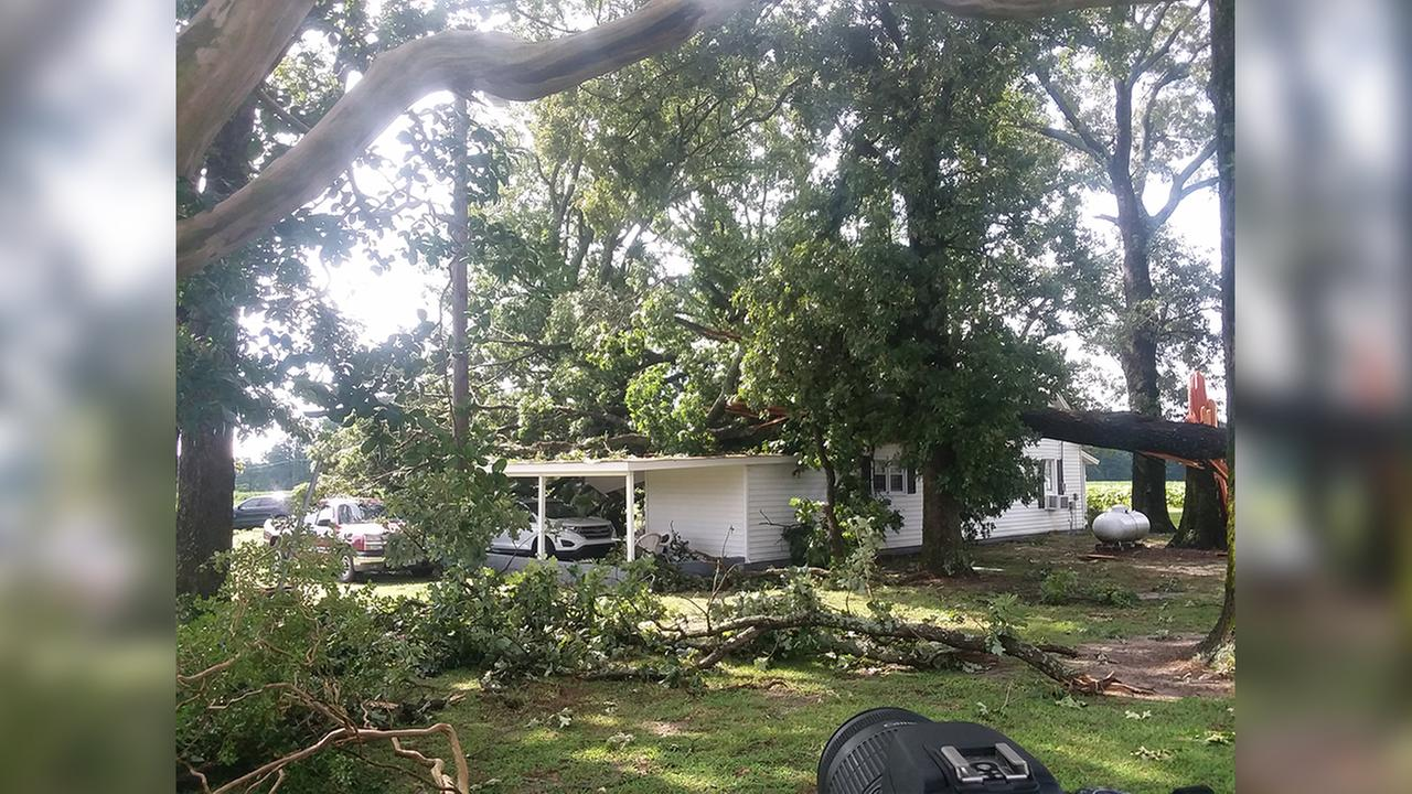 Due to weather, a tree fell on a house on Brick Mill Road in Coats.