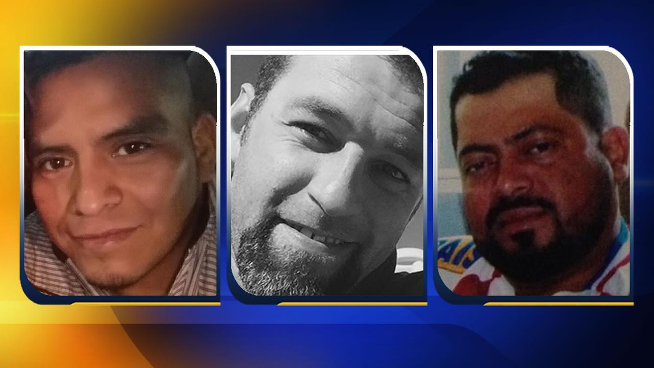 Jose Luis Lopez-Ramirez, Anderson Almeida, and Jose Erasmo Hernandez