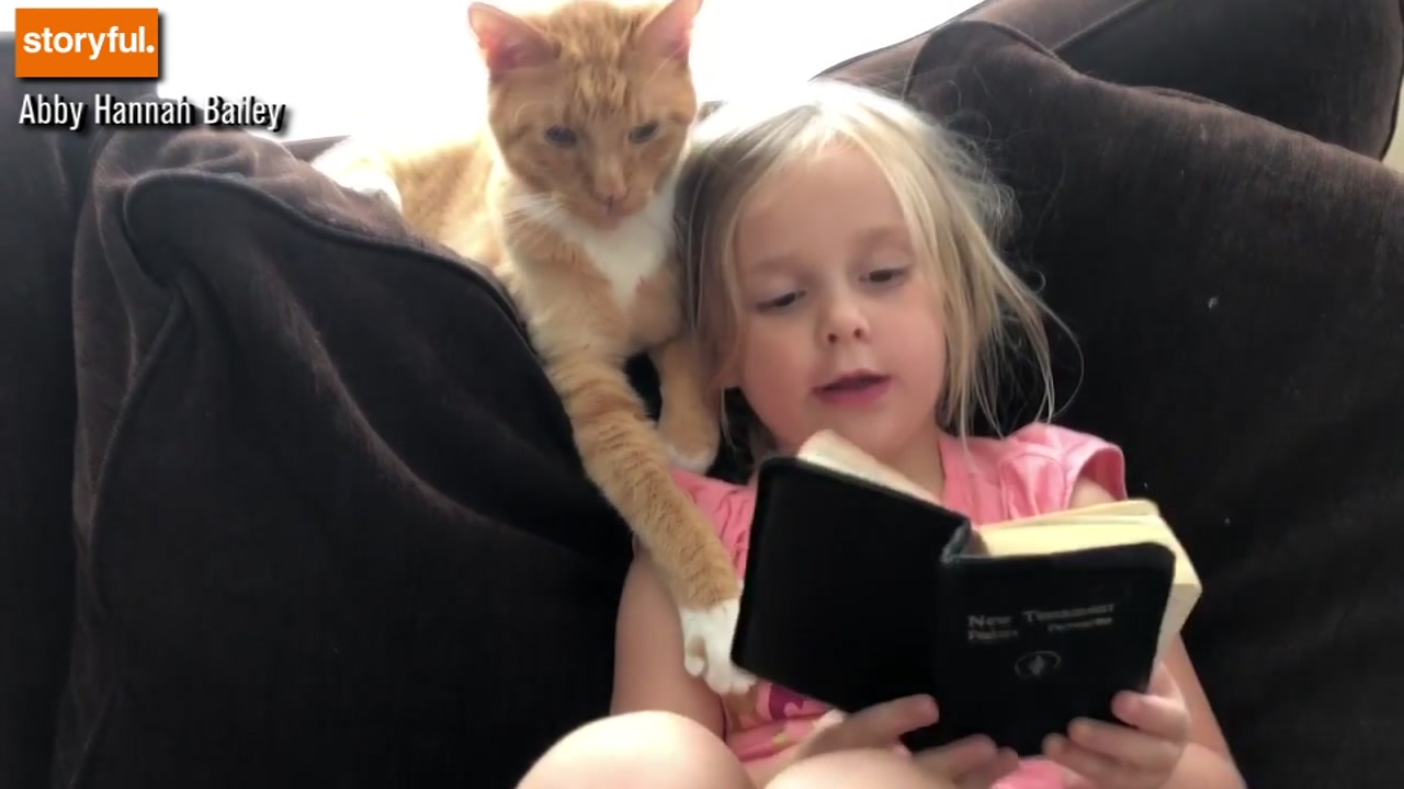 Too cute! Adorable girl reads her version of the bible to her cat