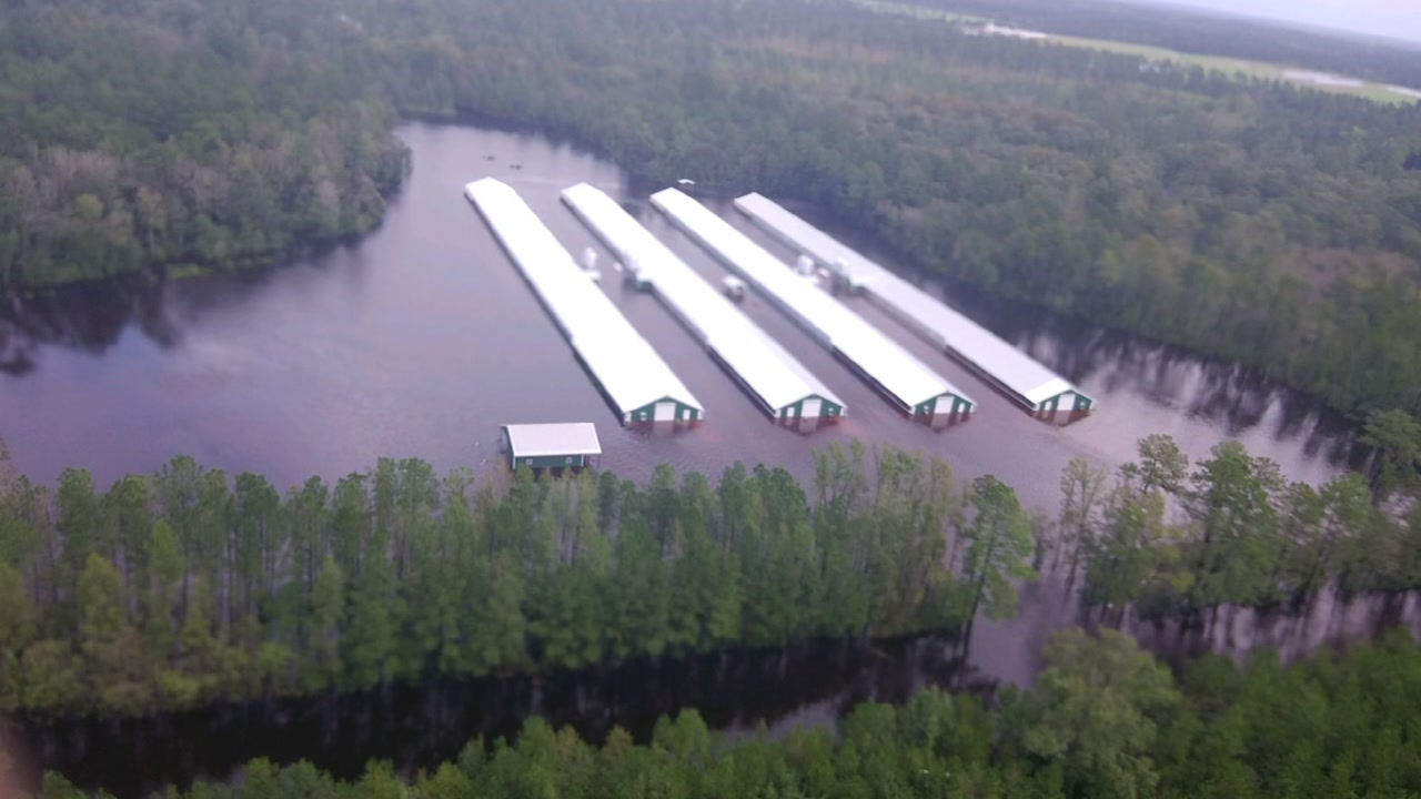 Chickens and hogs were killed from Florence floodwaters.