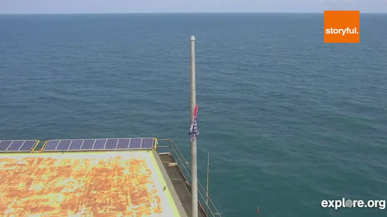 A live stream from the Frying Pan Tower is now back online.