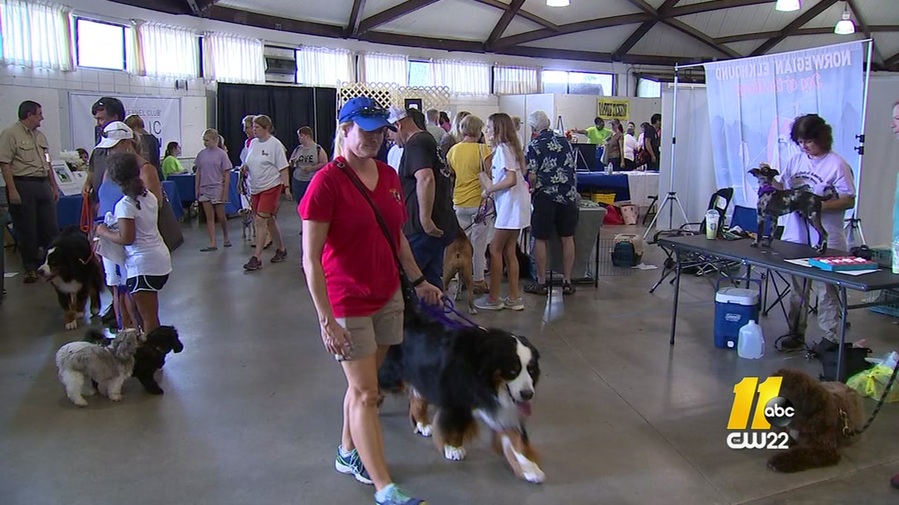 The NC State Fairgrounds hosted the American Kennel Club Responsible Dog Ownership day.