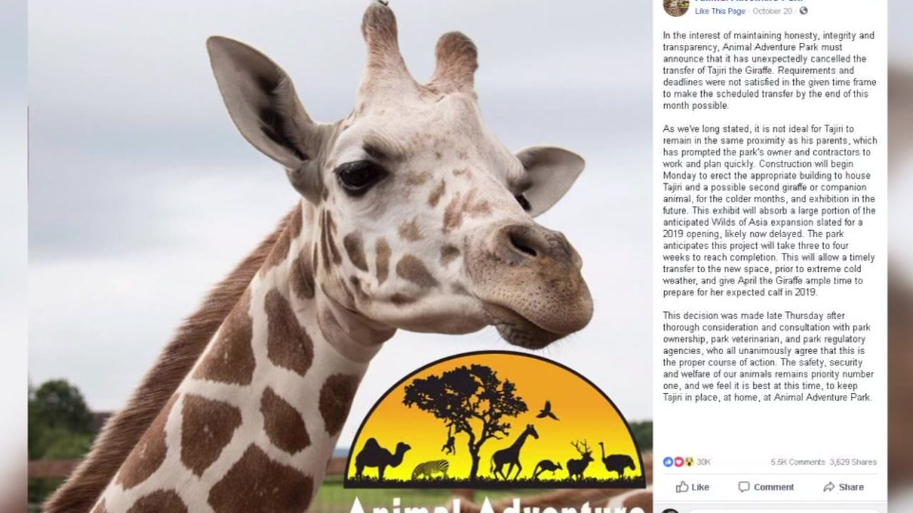 April the Giraffes baby will not be moving to North Carolina after all.