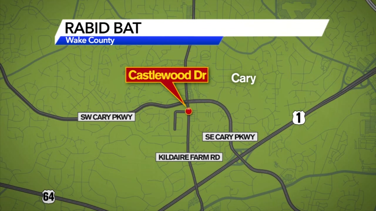 On Monday, a bat in Cary tested positive for rabies.