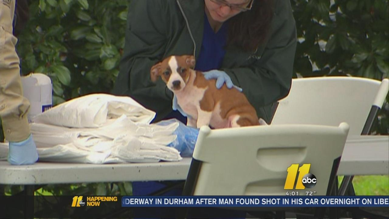 Animal seized in Willow Spring