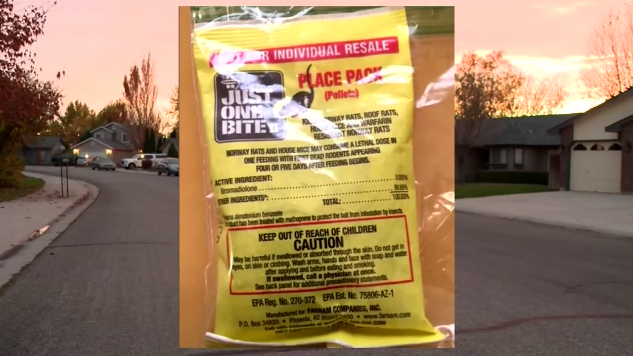 7-year-old Idaho child finds rat poison in trick-or-treat bag