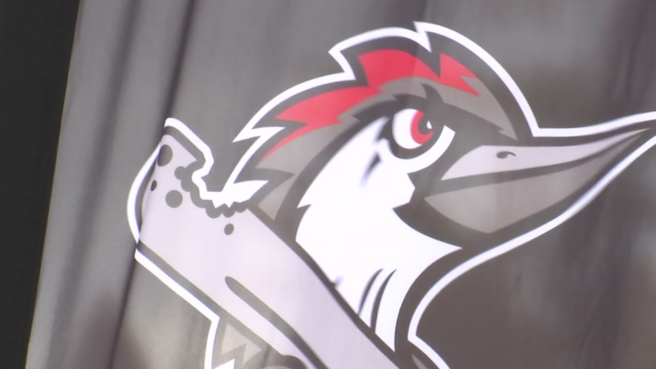 Meet Fayettevilles new minor league baseball team, the Woodpeckers