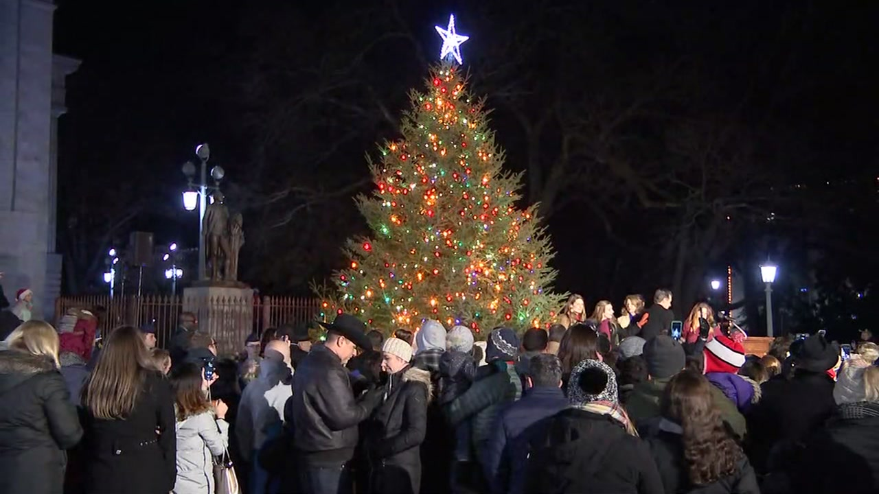 NC Capitol tree shines bright in downtown Raleigh