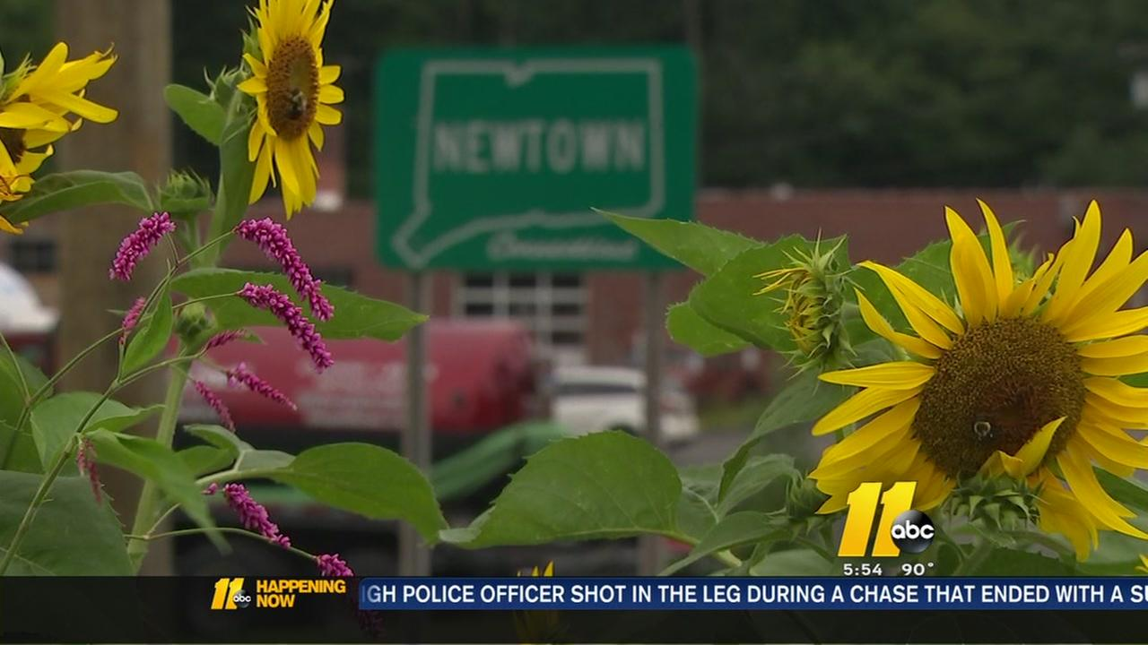 Moving forward, four years after Newtown