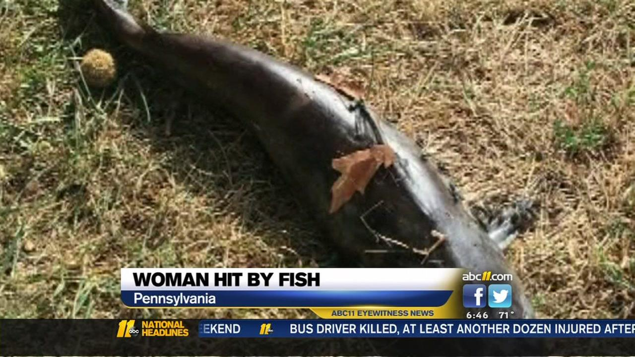 Woman hit by fish