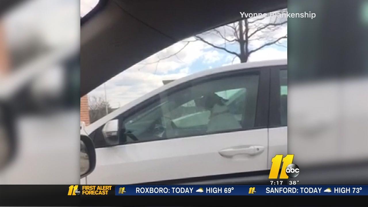 Impatient dog honks horn at owner