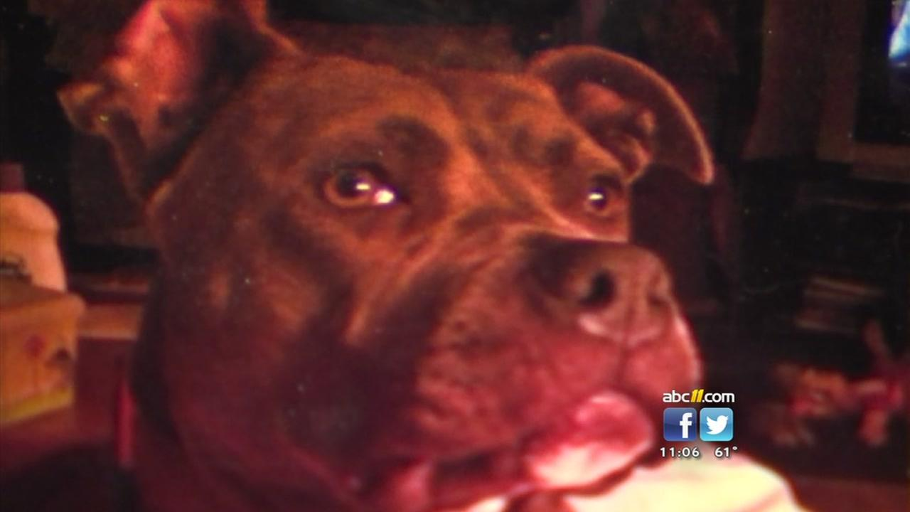 Dogs poisoned in Moore County