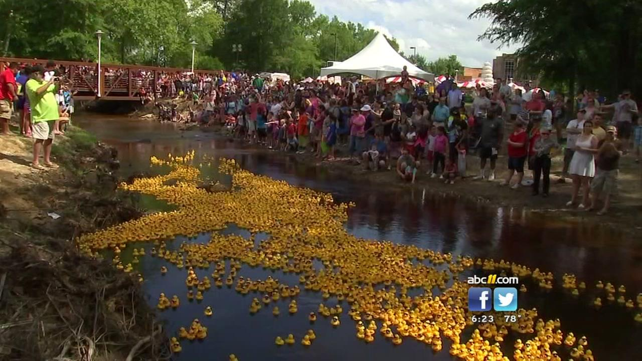 35th annual Dogwood Festival sees large turnout