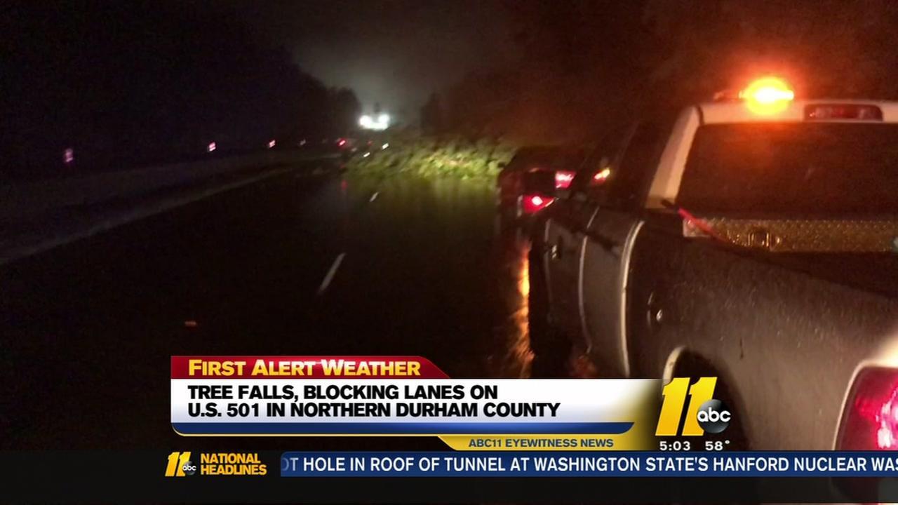 Tree falls, blocking lanes on US-501