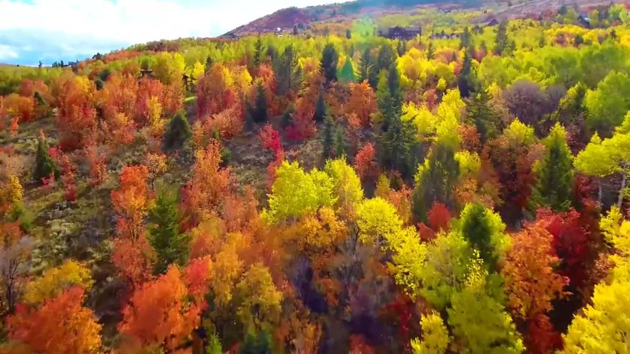 Breathtaking drone footage captures fall foliage
