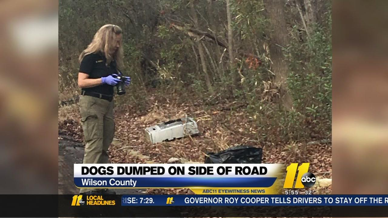 Dogs being dumped on side of roads in Wilson County