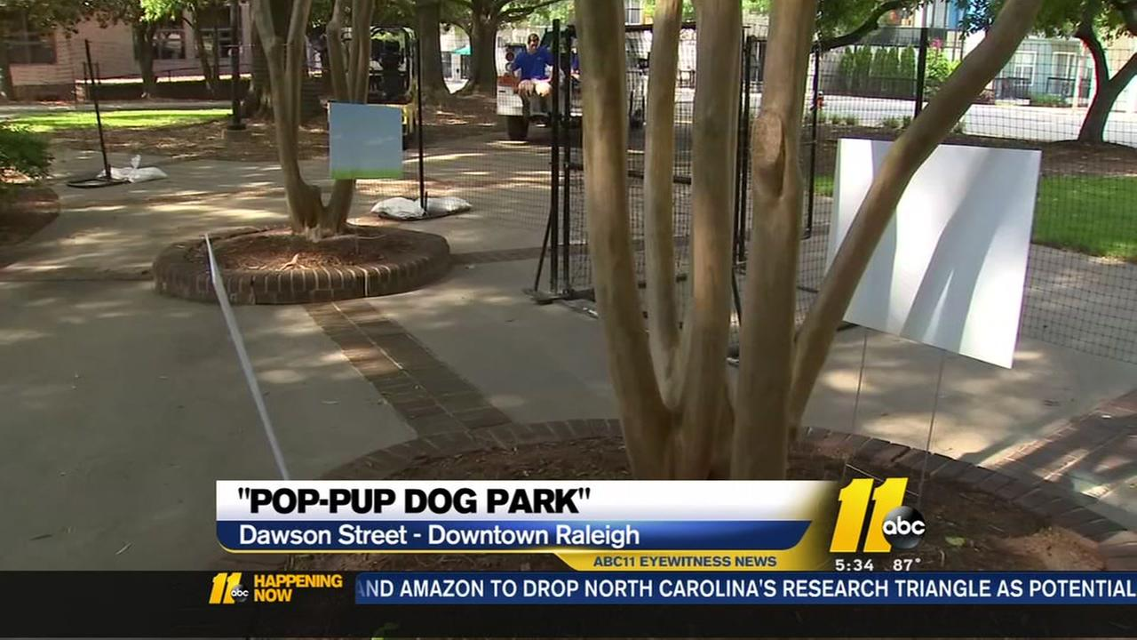 Pop up dog park comes to Downtown Raleigh