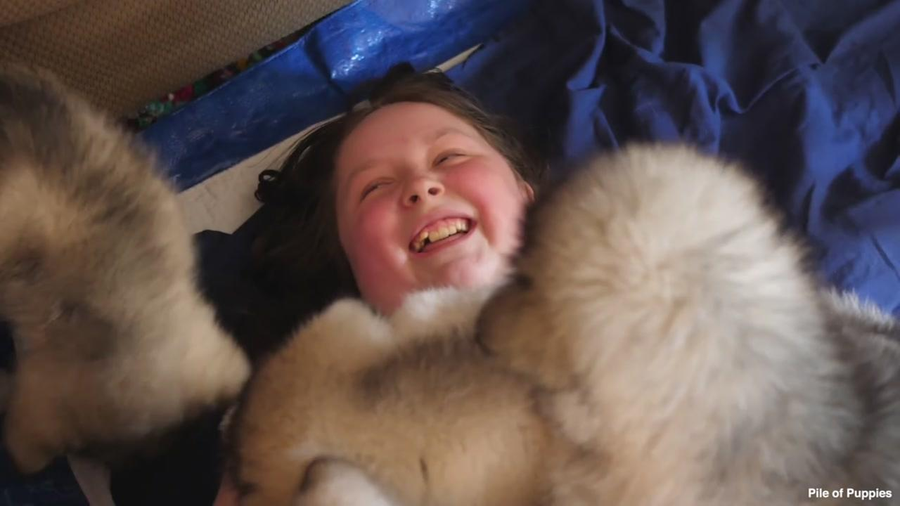 10-year-old girl battling cancer is overjoyed by pile of puppies