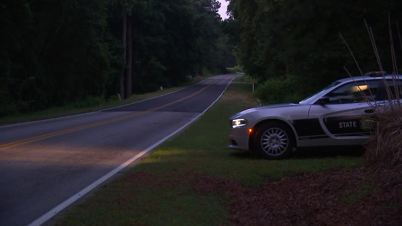 Pedestrian struck, killed in Johnston County