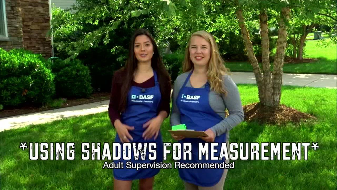 Measuring Shadow Heights