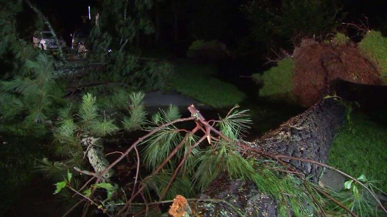 Powerful storm leaves behind damage in Johnston county