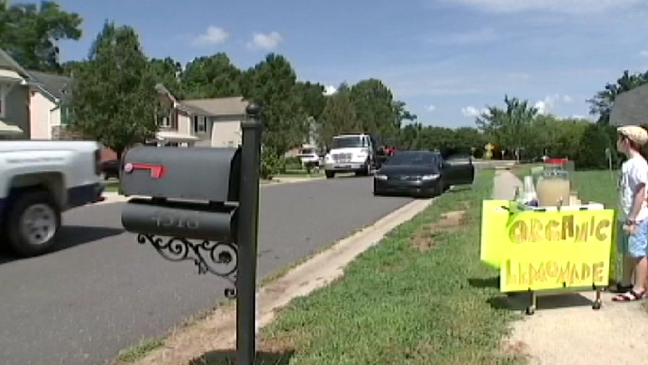 Deputies make arrest days after 9-year-old robbed at lemonade stand