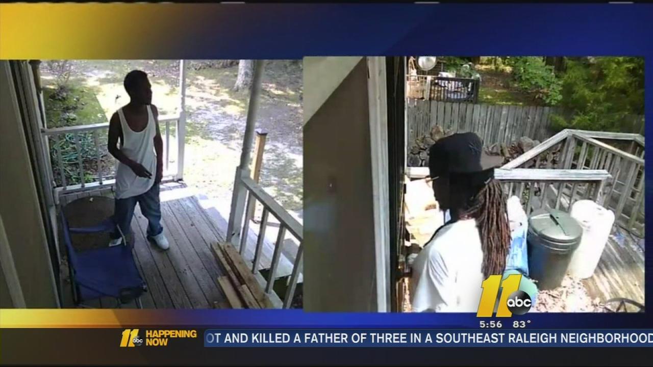 Backyard bandits caught on camera