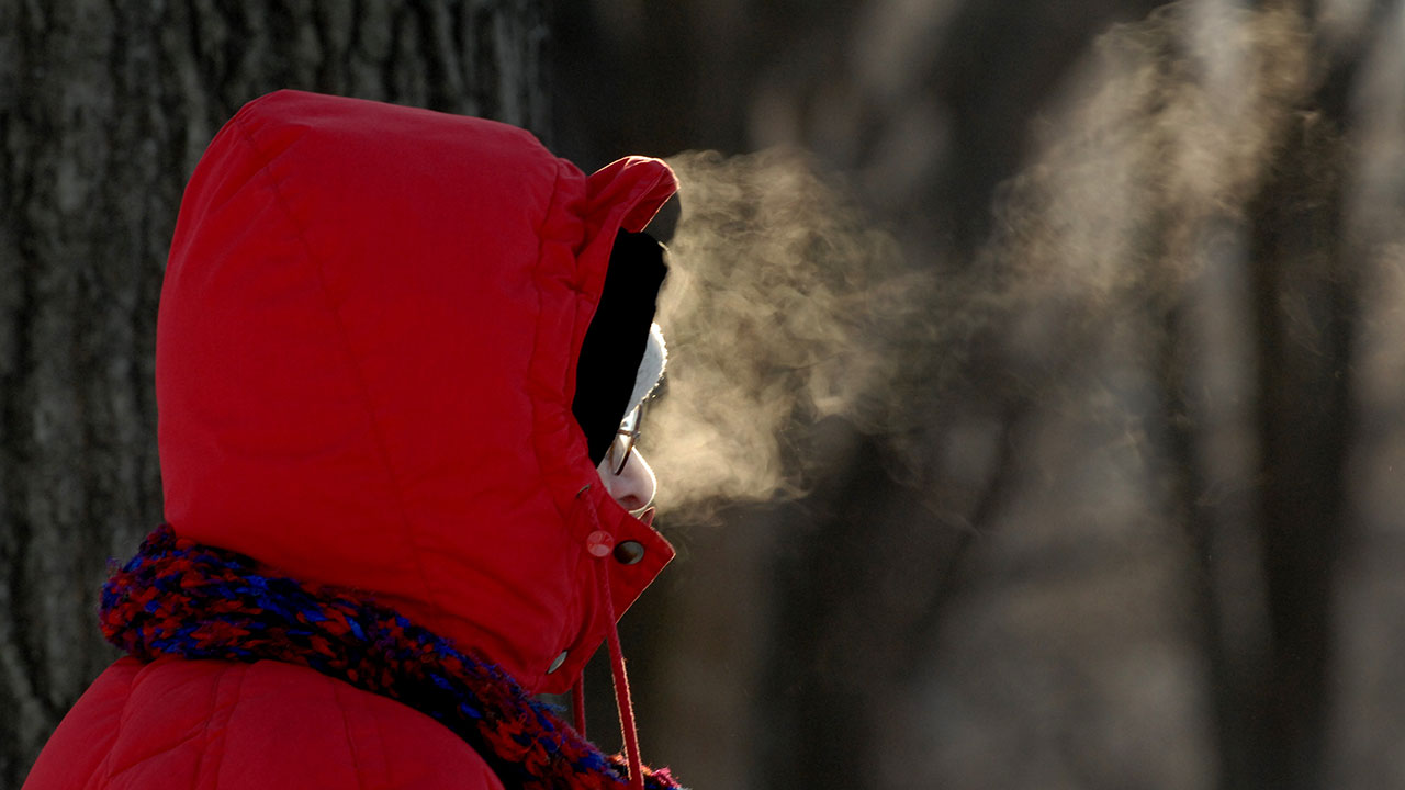 Snow Alert: Get tips on how to cope with the arctic blast