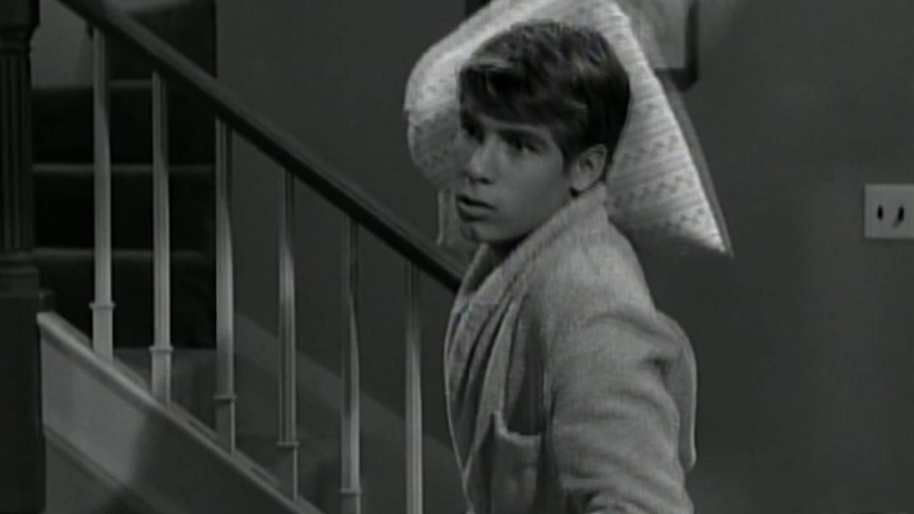 Don Grady is seen as a young actor in this still from My Three Sons. Grady died Wednesday, June 27, 2012, after battling cancer. He was 68.