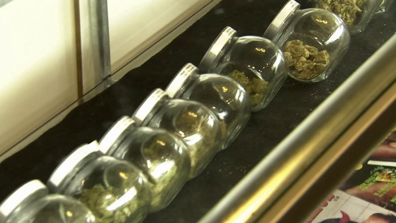 Medical marijuana is seen in jars in this undated file photo.