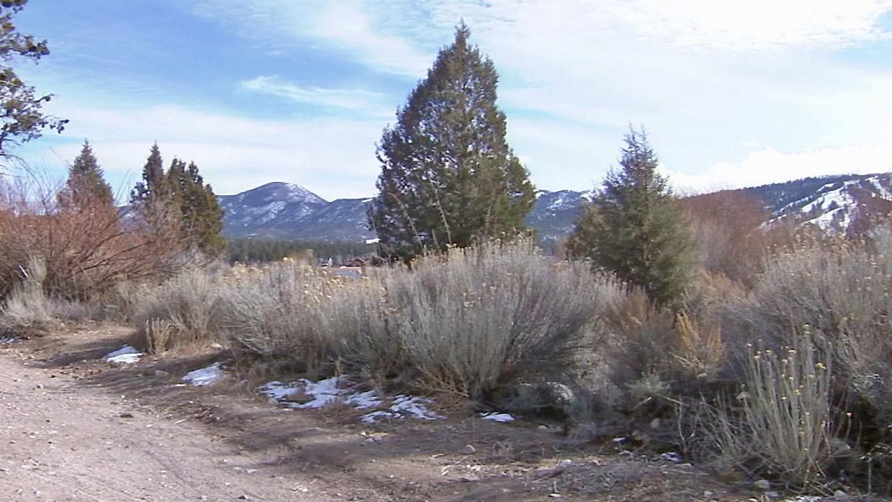 A slight dusting of snow is seen on the mountains of Big Bear Lake on Friday, Feb. 7, 2014.