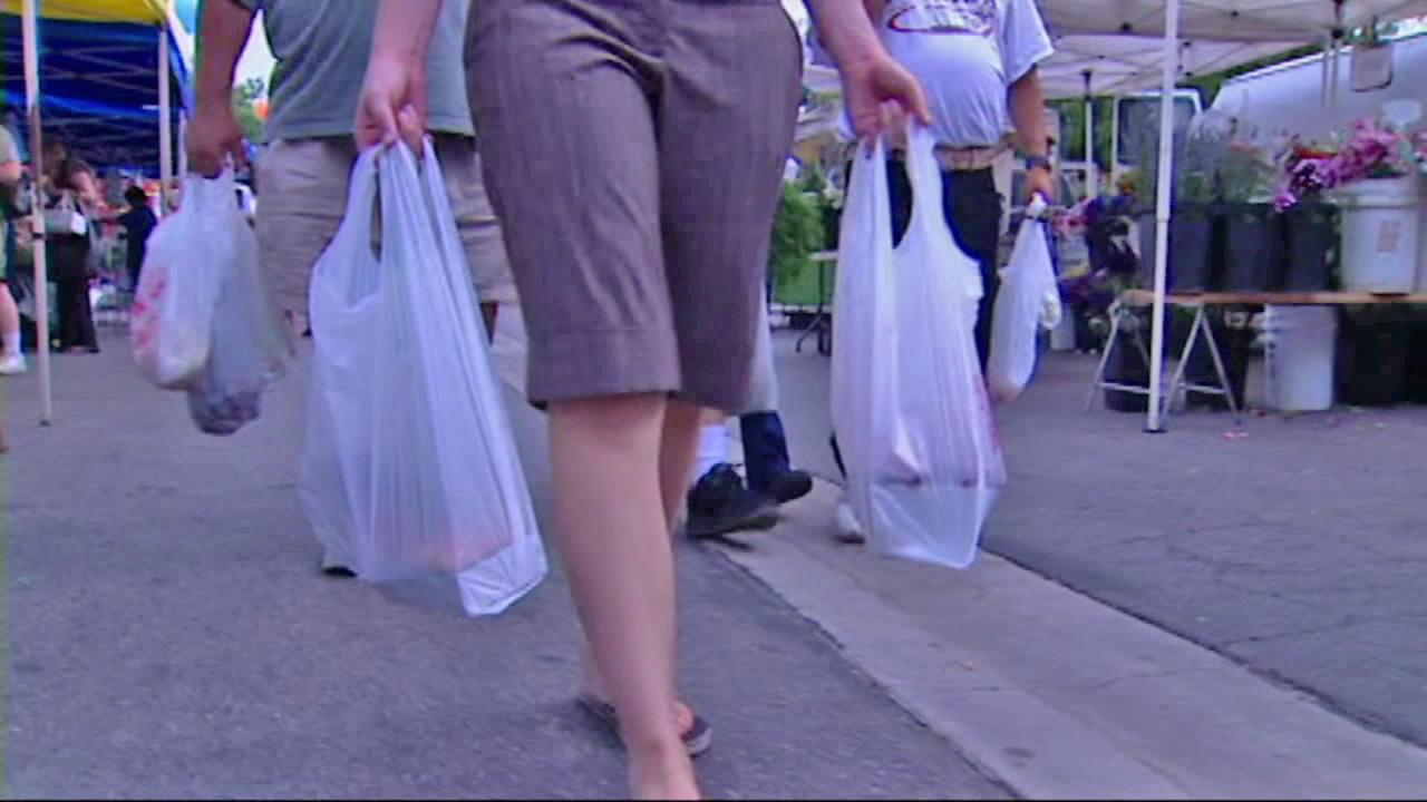 A shopper is seen carrying plastic bags in this undated file photo.
