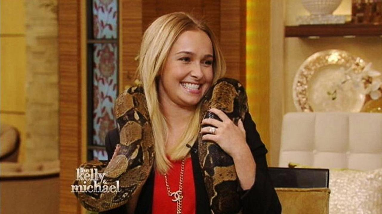 Hayden Panettiere appears on Live with Kelly and Michael on Wednesday, Oct. 9, 2013.