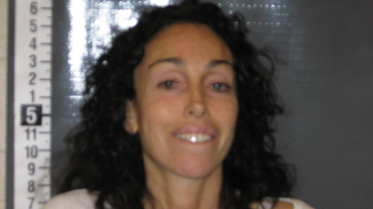 Former Hollywood madam Heidi Fleiss is seen in a booking photo following her arrest on suspicion of driving under the influence of marijuana on Tuesday, Oct. 22, 2013.