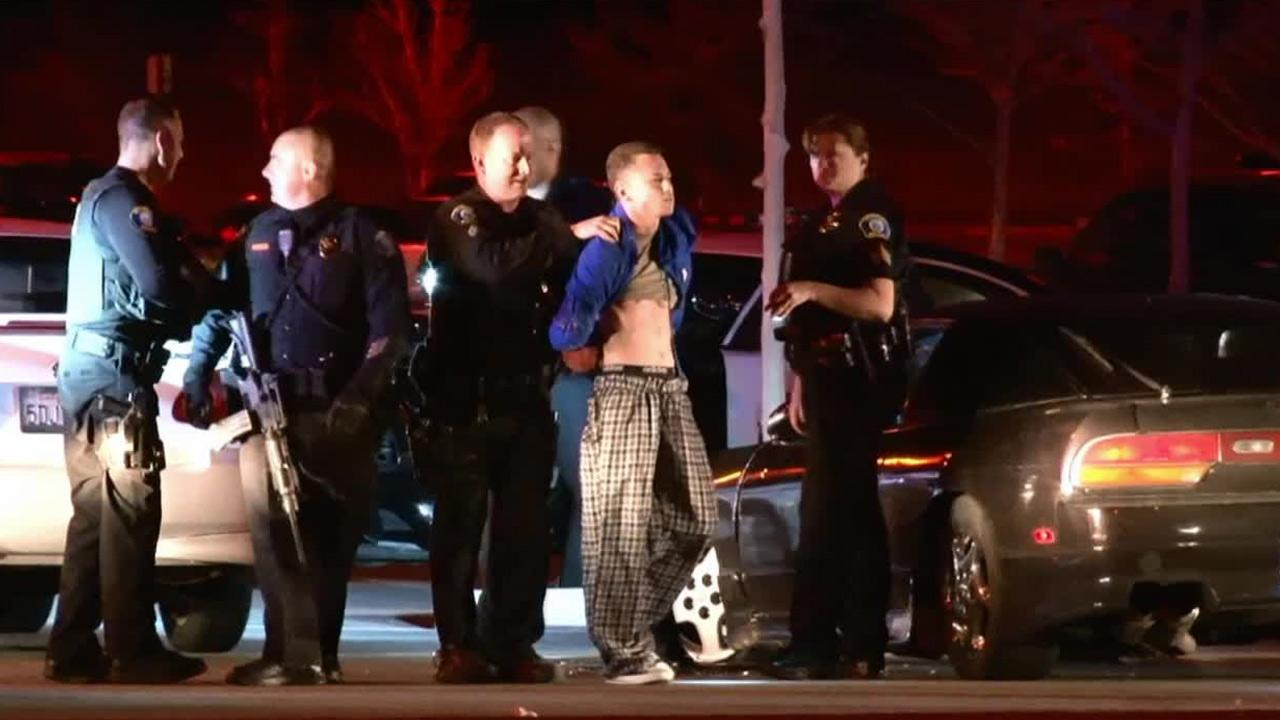 A police K-9 helped subdue a suspect after a police chase that ended in Murrieta Sunday, Feb. 9, 2014.